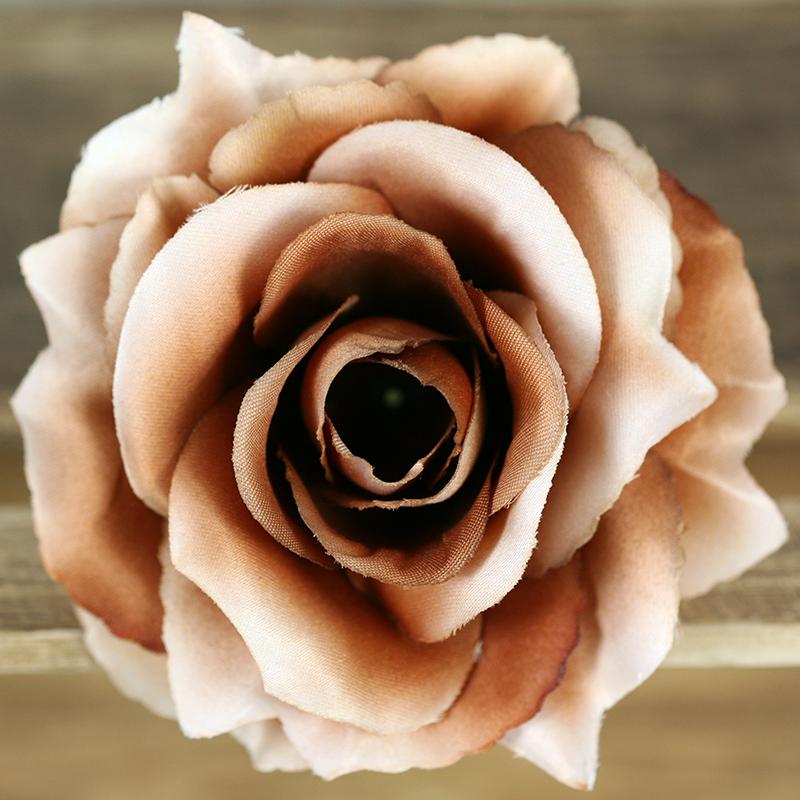 Ruža vencová rozvitá  JX1636-30