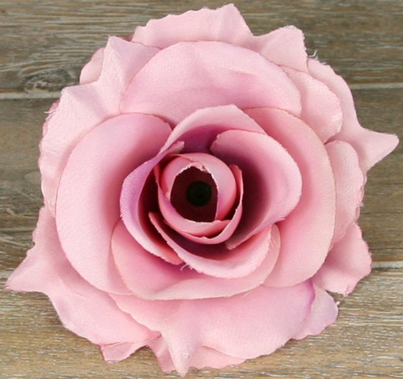 Ruža vencová rozvitá  JX1636-42