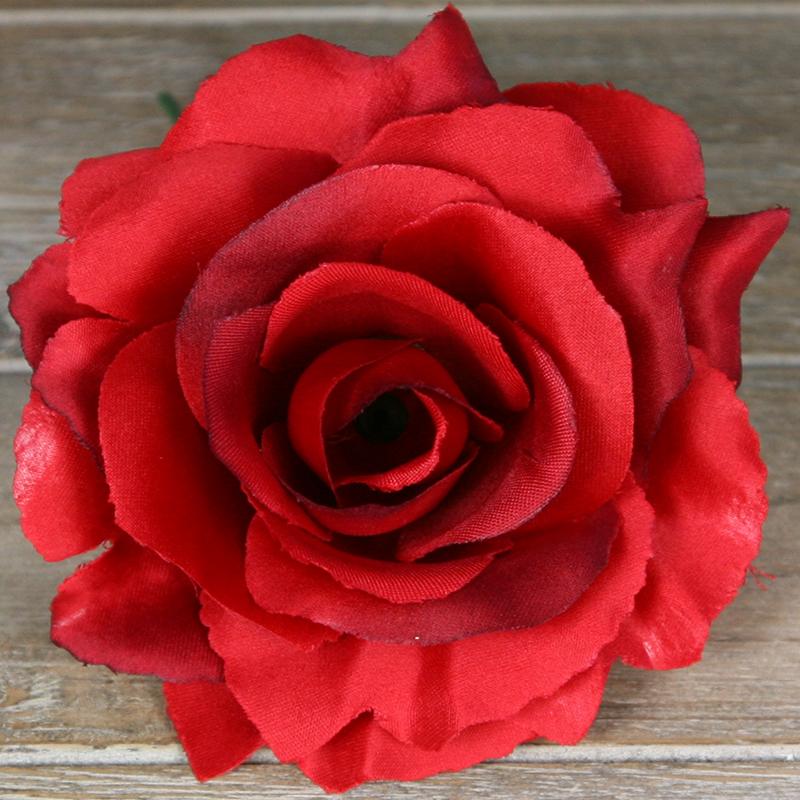 Ruža vencová rozvitá  JX1636-46