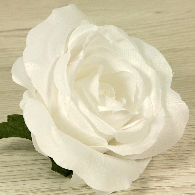 Ruža vencová  JX19095-1