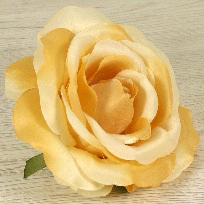 Ruža vencová  JX19125-17
