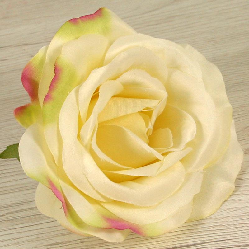 Ruža vencová  JX19125-7