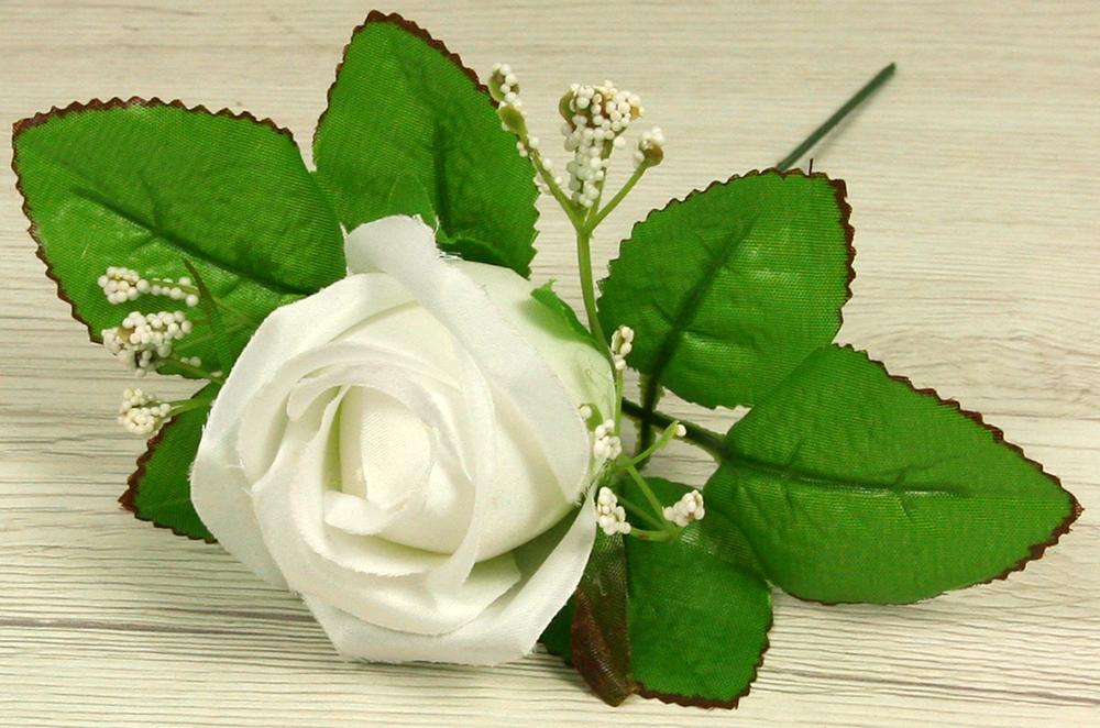 Ruža vencová puk  JX1915-1
