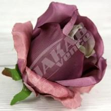 Ruža vencová  JX1267-17