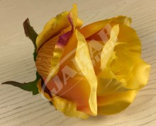 Ruža vencová  JX1267-30