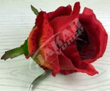 Ruža vencová  JX1267-33