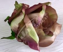 Ruža vencová  JX1267-34