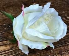 Ruža vencová  JX1267-60
