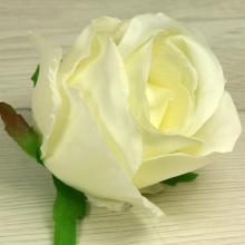Ruža vencová  JX1267-69