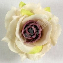 Ruža vencová rozvitá  JX1636-11