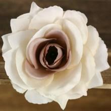 Ruža vencová rozvitá  JX1636-12B