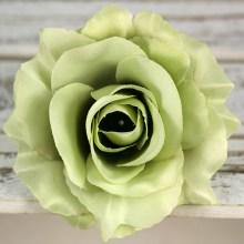 Ruža vencová rozvitá  JX1636-12