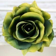 Ruža vencová rozvitá  JX1636-15B