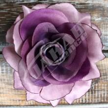 Ruža vencová rozvitá  JX1636-17