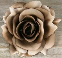 Ruža vencová rozvitá  JX1636-22