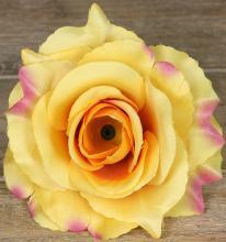 Ruža vencová rozvitá  JX1636-24