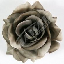 Ruža vencová rozvitá  JX1636-26