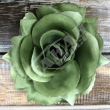 Ruža vencová rozvitá  JX1636-29