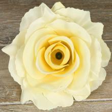 Ruža vencová rozvitá  JX1636-4
