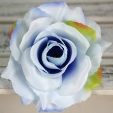Ruža vencová rozvitá  JX1636-52