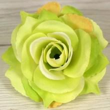 Ruža vencová rozvitá  JX1636-5