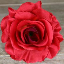 Ruža vencová rozvitá  JX1636-58