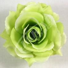 Ruža vencová rozvitá  JX1636-6