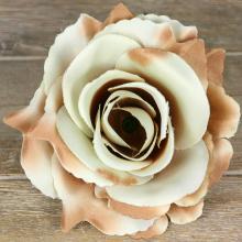 Ruža vencová rozvitá  JX1636-73