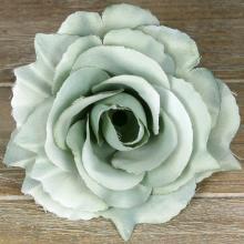 Ruža vencová rozvitá  JX1636-74