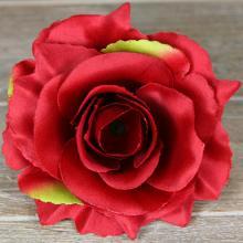 Ruža vencová rozvitá  JX1636-75