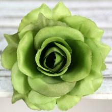 Ruža vencová rozvitá  JX1636-A8