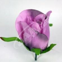 Ruža vencová puk  JX1662-15