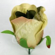 Ruža vencová puk  JX1662-19