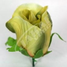 Ruža vencová puk  JX1662-8