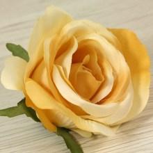 Ruža vencová  JX19095-17