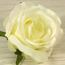 Ruža vencová  JX19095-2
