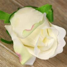 Ruža vencová  JX1910-7