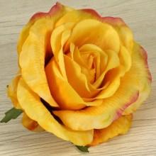 Ruža vencová  JX19125-65