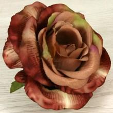 Ruža vencová  JX19125-66