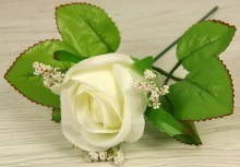 Ruža vencová puk  JX1915-2