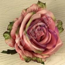 Ruža vencová JX1921-31
