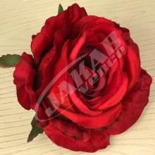 Ruža vencová JX1921-33