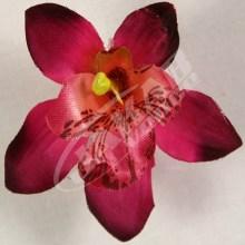 Orchidea vencová  SCC12-3)