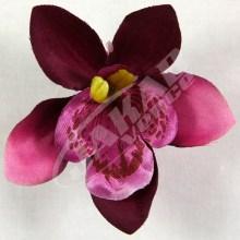Orchidea vencová  SCC12-9