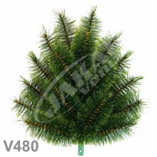 Kytica borovicová klasická V480