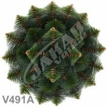 Veniec borovicový dvojfarebný V491A