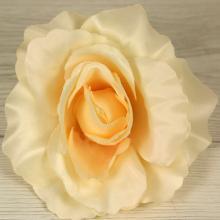 Ruža vencová  XYL001-4 YE