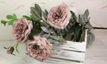 Ruža x3  YX1012