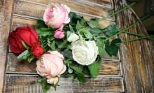 Vetva ruža (YX1015)