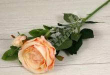 Ruža x1+2  YX1016